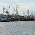 Fischereiwirtschaft